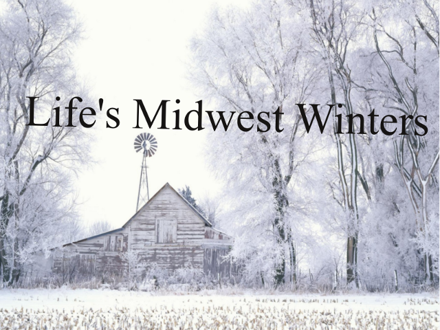Life's Midwest Winters